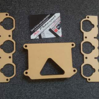 CTSC Methanol injection manifold
